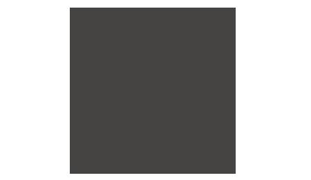 WordPress hosting Danmark | Her er dine muligheder!