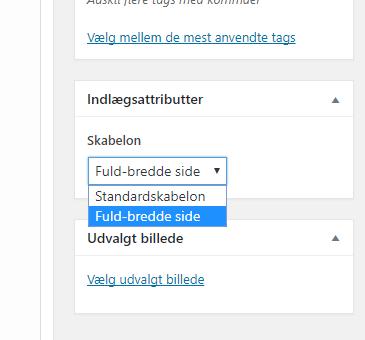 WordPress indlæg template hækle